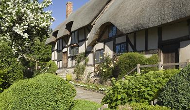20% off Shakespeare's Birthplace attractions during the Cricket World Cup