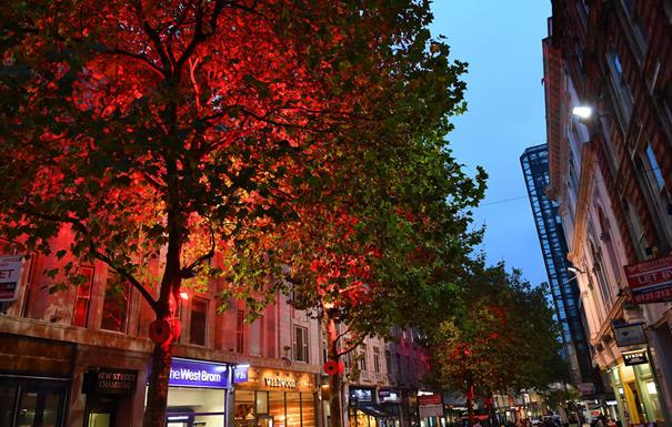 Remembrance tree lights and giant poppies